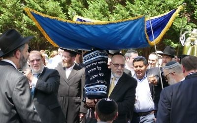 The new Beth Jacob Torah, dedicated in memory of Edward Kesten by the Schloss and Reznick families, parades along Breezy Lane beneath a chuppah.