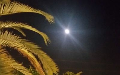 The moon over Israel, taken by Jan Jaben-Eilon