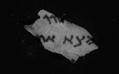 New infrared imaging reveals letters hidden on a Dead Sea Scrolls fragment from Qumran Cave 11. (Photo by Shai Halevi, Israel Antiquities Authority)