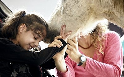 ALEH Negev includes an interactive animal farm, with horses and other wildlife for children with special needs to experience.