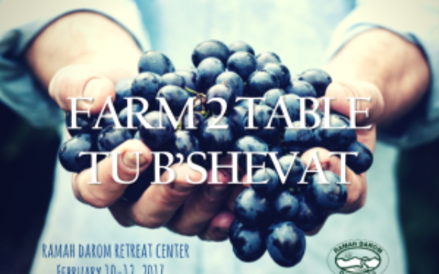 Sign up for the Farm 2 Table Tu B'Shevat weekend here: http://ramahdarom.org/programs/farm-2-table-tu-bshevat/