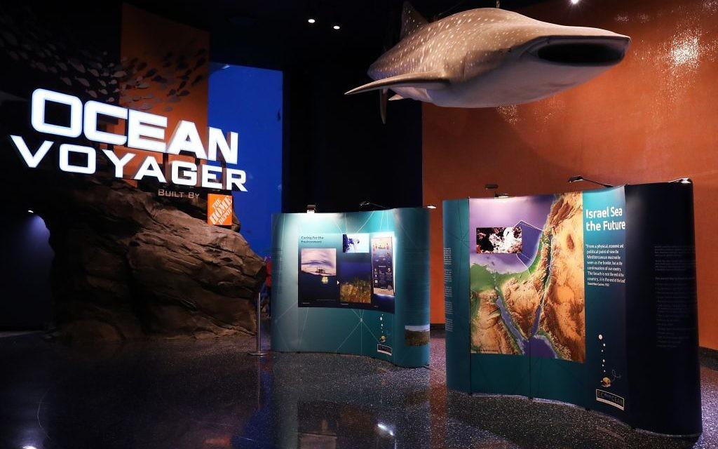 Find EcoOcean's traveling exhibit on Israel's sea at the Ocean Voyager tank inside the Georgia Aquarium through April 26.