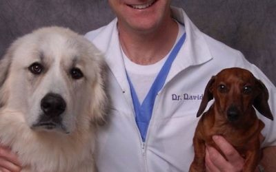 David Filer spends time with two of his pets, great Pyrenees Max and dachshund Lilly.