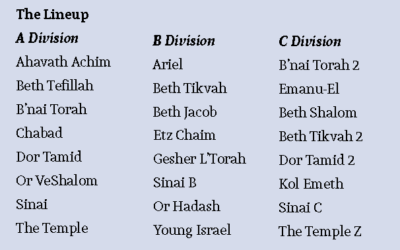 Divisions are set for the 2017 Atlanta Synagogue Softball season.