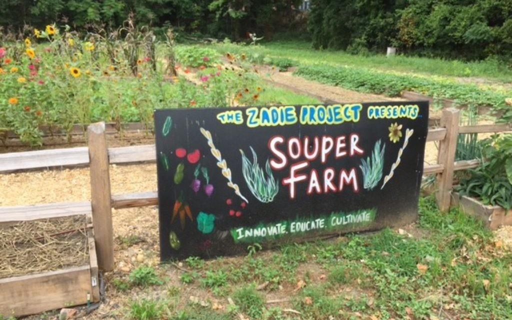 The 1-acre Souper Farm supplies produce for Zadie Project soups.