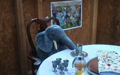 Cory Shaw's sukkah on Dartford Drive in Dunwoody is roomy and hospitable enough for an elephant to feel at home.