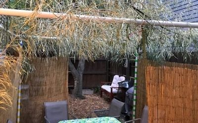 The Poncey-Highland sukkah of Sandrine Simons and her family displays a classic, rustic look.
