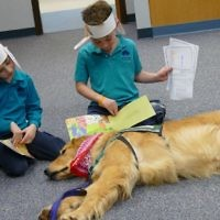 Worth, a Service Assistants dog who will turn 2 in March, couldn't be much more relaxed while listening to stories read by kindergartners. Worth, who is training with Jane Martin, was one of at least four dogs getting experience with children and school situations at Davis on Feb. 5.