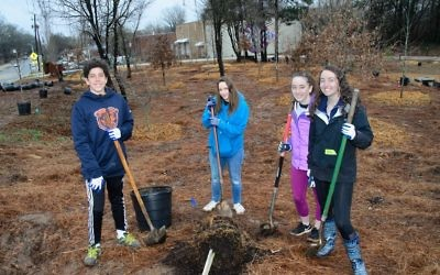 (From left) Ariel Simons, Eliza Frankel, Rosie Finglass and Tali Eplan Frankel work together to plant a tree.