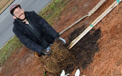 Gabe Monett prepares the rich soil for a young tree.