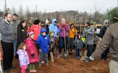 Volunteers of all ages gather for directions on how to plant trees so that they will thrive in Atlanta.