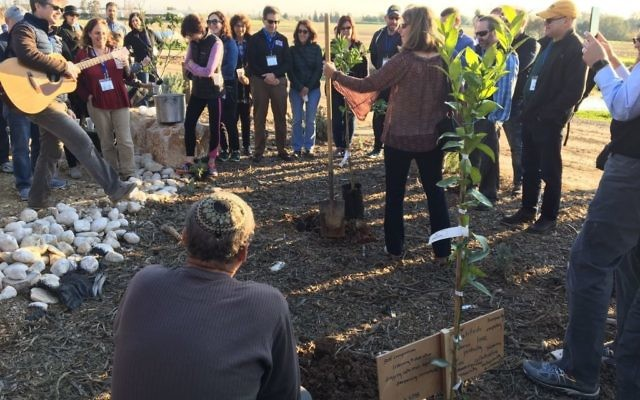 Members of the Federation mission to Israel plant a fruit tree on Tu B'Shevat.