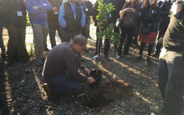 In one of the highlights of the community leadership mission to Israel, Eric Robbins prepares a tree for planting on Tu B'Shevat.