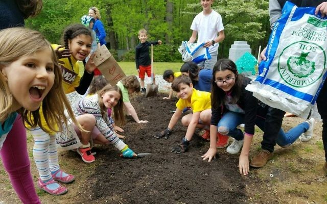 Pupils at Chabad of Forsyth's JUDA Hebrew school participate in Planting Day to prepare a garden outside Congregation Beth Israel.