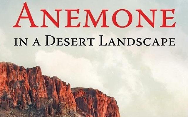 """Harry Stern's memoir, """"Anemone in a Desert Landscape,"""" covers his time as an oleh."""