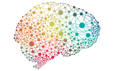Neurodiversity is a concept that any neurological differences you have might be respected.