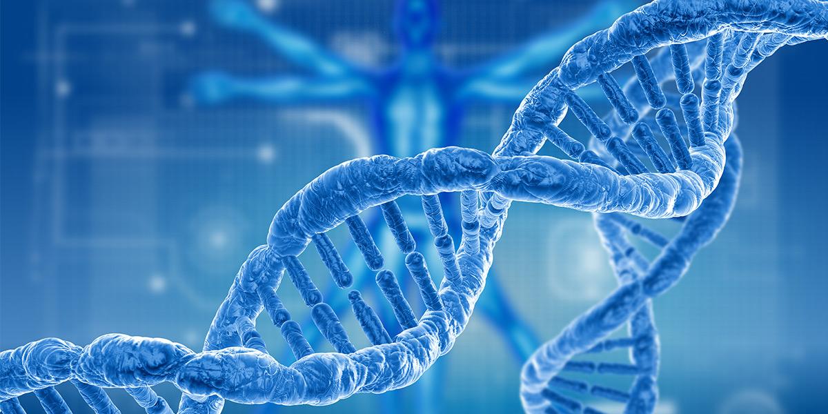 Jews  Genes And Jscreen  What U2019s New In Jewish Genetics