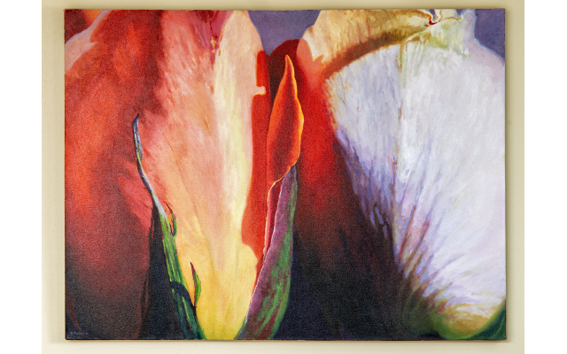 This untitled sensual floral painting was done by Barbara Tiffany, the Florida artist who encouraged Barr to begin painting and ran a workshop he took for three years.