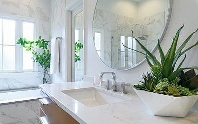 Modern finishes and fixtures serve as an elegant backdrop for the live plants in this bathroom.