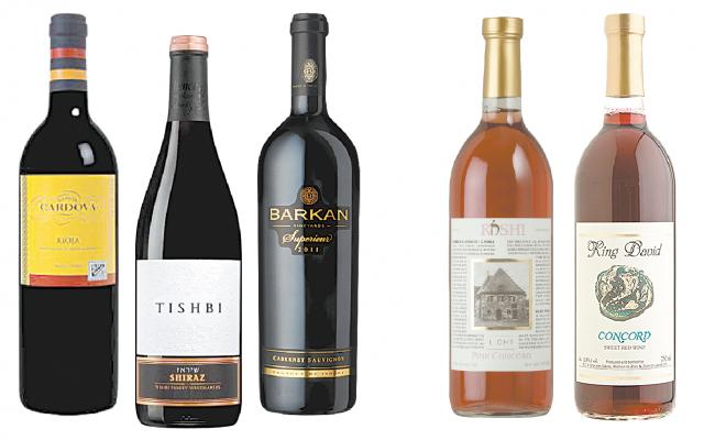 Ramon Cardova Rioja, Tishbi Shiraz and Barkan Vinyards Cabernet Sauvignon with Rashi Pink Concord and King David Concord.