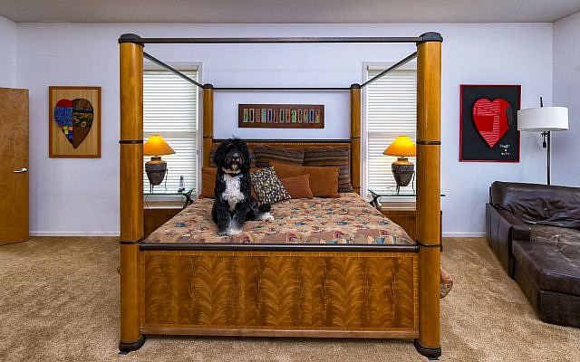 Cooperative pup Juno, a Bernese Mountain poodle, enjoys her spot on the master bed between two original heart lacquer works by Shulman.