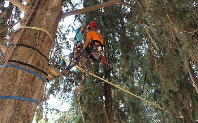 Photos by Yoav Devir, KKL-JNF // Treetop ropes course at Etgarim summer camp, KKL-JNF's Tzipori Field and Forest Center.
