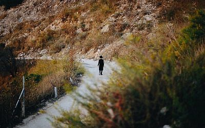 """""""Man Walking Along a Path"""" is another example of Schusterman-Lapidus' reflective pieces."""