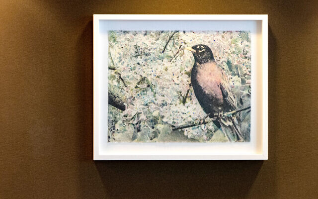 """""""Untitled Sparkling Bird,"""" 2010, in a conference room, is by Kiki Smith. Levy notes that this is a bit offbeat from the usual collection."""