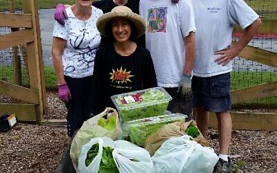 One week's harvest from Temple Emanu-El's garden.