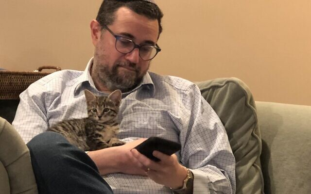 The Heller children had to wear down Rabbi Heller to take on a third feline.