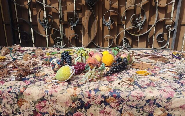 Some of Eric Miller's favorite fruit ornaments will decorate his sukkah's schach.