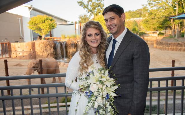 The bride and groom were photo bombed by an elephant in the background.