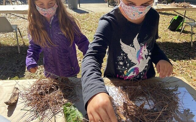 The Schapiro sisters went with their mom to the Piedmont Park Homeschool Science Day, during which they learned about a bird's nest.