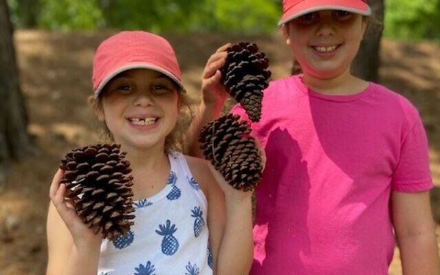 Finding huge pinecones when visiting a fishery in Georgia's coastal plain is one of the many science-based outdoor lessons for the Schapiros.