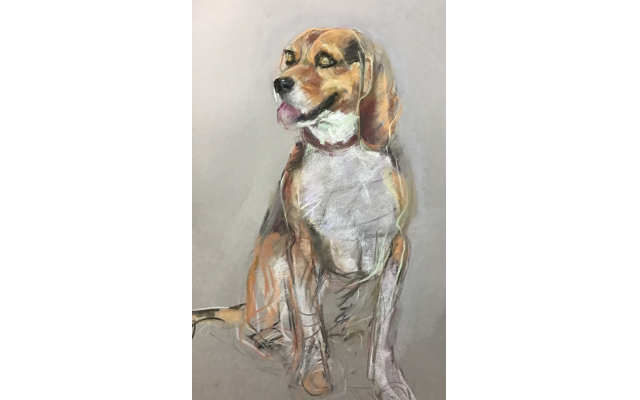 Penny, a beagle, is one of Rothman's more recent works.