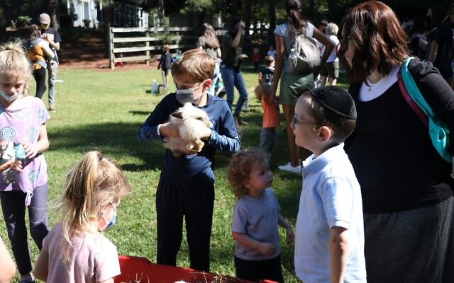 The JFF Family Sukkot Program included many activities, including a mobile petting zoo.