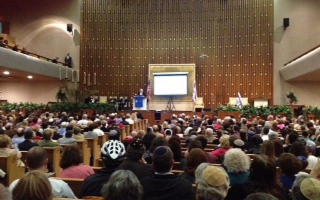 Pro-Israel gathering in Atlanta. (photo courtesy)