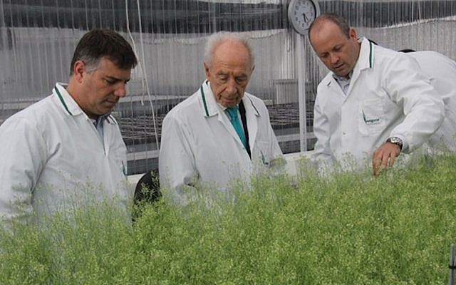 Former president Shimon Peres examines experimental plants produced by the Israeli agritech firm Evogene, on a visit to the company's headquarters, July 15, 2013. (Courtesy)