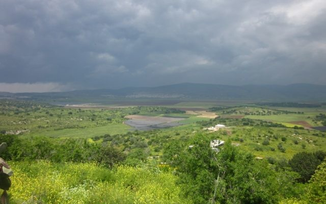 A sweeping view of the Jezreel Valley from ancient Tsippori. (Nili M. Zaharony)