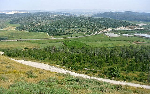 Valley of Elah viewed from the top of Tel Azeka. (Wikimedia Commons)