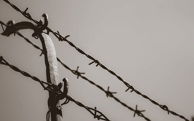 Barbed wire (via iStock)
