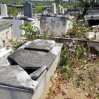 The graves look like this at the United Hebrew Congregation cemetery since there are hardly any  Jews to look after it. Copyright Rayna Rose Exelbierd