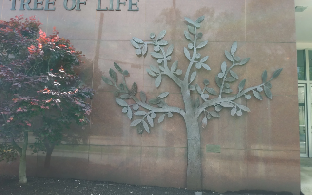Tree of Life - Or L'Simcha Congregation exterior, Squirrel Hill, Pittsburgh, PA