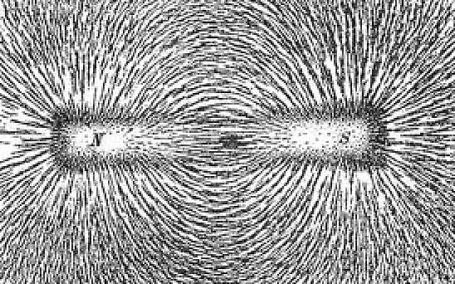 Scattered magnetic filings around a magnet align themselves along the force lines of magnetic field.