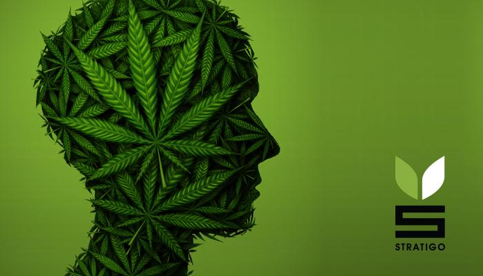 Ehud Barak, Snoop Dogg and the Cannabis connection