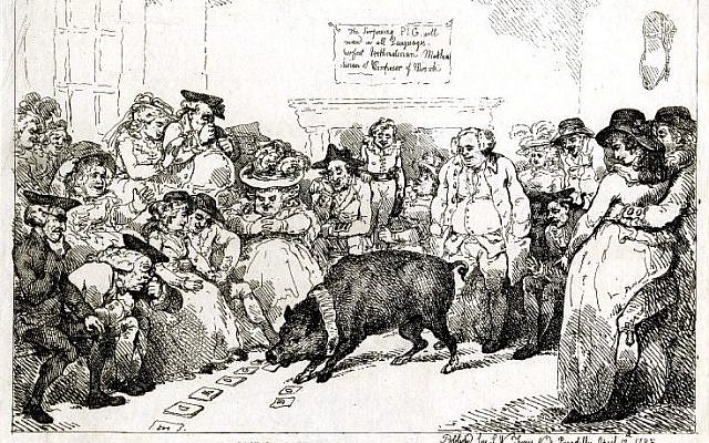 Illustration of the Learned Pig by Thomas Rowlandson, 1785. (Public Domain/ Wikimedia Commons)