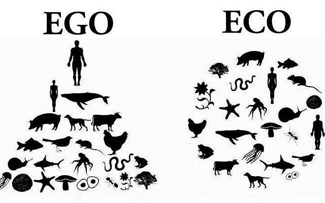 From Ego to Eco