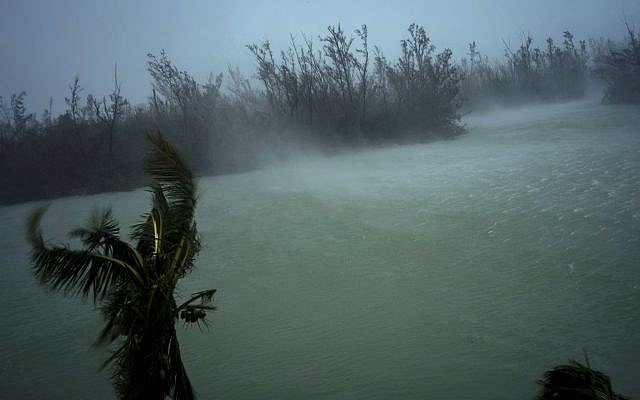 Illustrative. Strong winds from Hurricane Dorian blow the tops of trees and brush while whisking up water from the surface of a canal that leads to the sea, located behind the brush at top, seen from the balcony of a hotel in Freeport, Grand Bahama, Bahamas, September 2, 2019. (AP Photo/Ramon Espinosa)