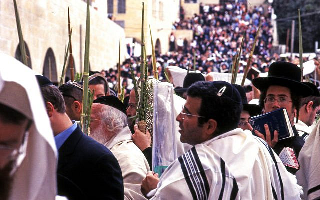 JERUSALEM, ISRAEL - October 14: Orthodox Jewish pray at the Western Wall during the Jewish holiday of Sukkot in Jerusalem, Israel.