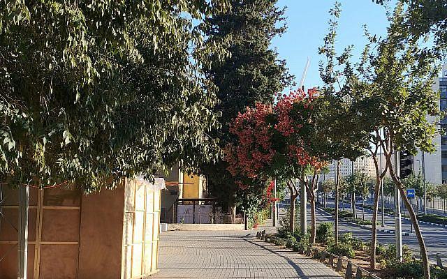 The Sukkah turned home on Hertzl boulevard.